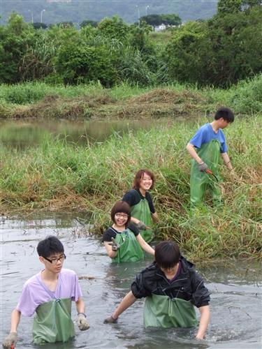 本校260位修習「生態社區建構」課程的同學,日前進行關渡自然公園之志工服務,為國境生態保育付出一己之力,並體驗服務的真諦。