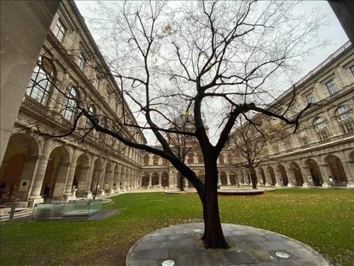 58-奧地利姊妹校維也納大學優美又古老的校園景緻