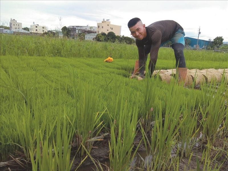 國企四張開聞於暑假在南投農地打工,賺取學費生活費也體驗臺灣農家生活。(圖/張開聞提供)