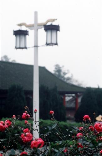 宮燈教室及周邊景象-18