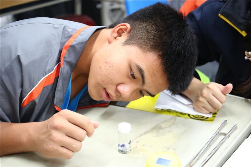 茂林國中的同學正在專注研究自己的化學實驗成果